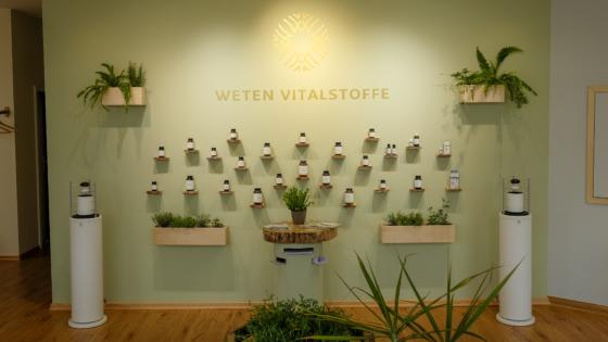 Institut-für-natürliche-gesundheit-foyer